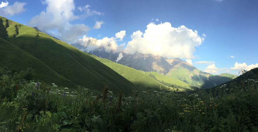 Lush meadows on the way to Ushguli